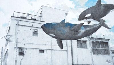 Rin Kuroki, 'HAZAMA-13 Orca', 2017