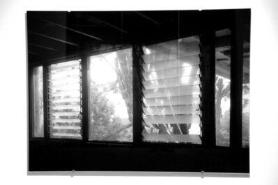 Veronika Kellndorfer, 'Succulent Screen 2 (transparent)', 2007