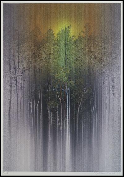 Susumu Endo, 'Space & Space Nature 1503', 2015
