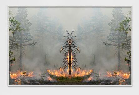 Julius von Bismarck, 'Fire with Fire (Test Apparatus #7)', 2021