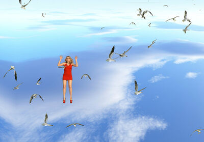 Petra Cortright, 'Clouds over the Ocean_upsidedownwithstuckseagull_snowseagulls_looksgood2_NOlineup_withLucyfall_mute_blkbg_wide_60tops', 2015