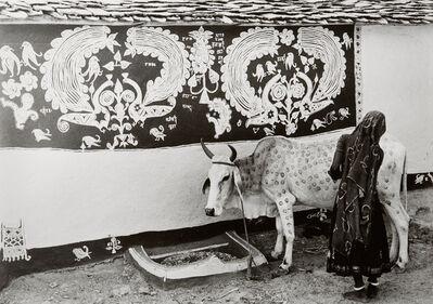 Jyoti Bhatt, 'A Meena (tribal) woman decorating the bullock for 'Gordhan' festival, Rajasthan', 1969