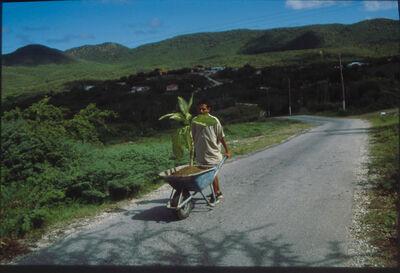 Wilfredo Prieto, 'Walk', 2000