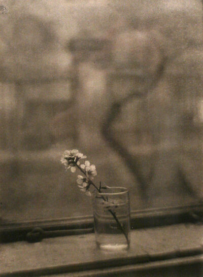 Josef Sudek, 'Window of my Studio with a Blossom', 1950
