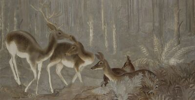 Camille Roche, 'Does in the Wood'