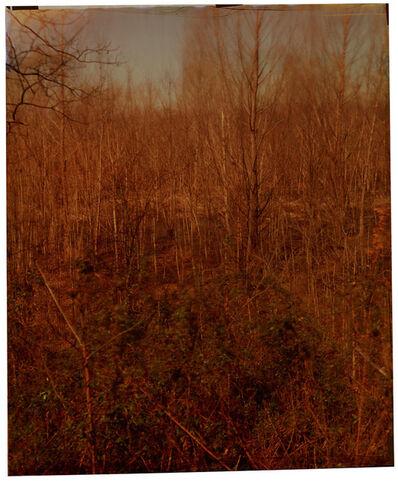 John Chiara, 'Stovell Road at Stovell', 2014