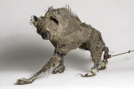 Elizabeth Jordan, 'Coyote wrapped in burlap Sculpture: 'The Queens Beast'', 2014