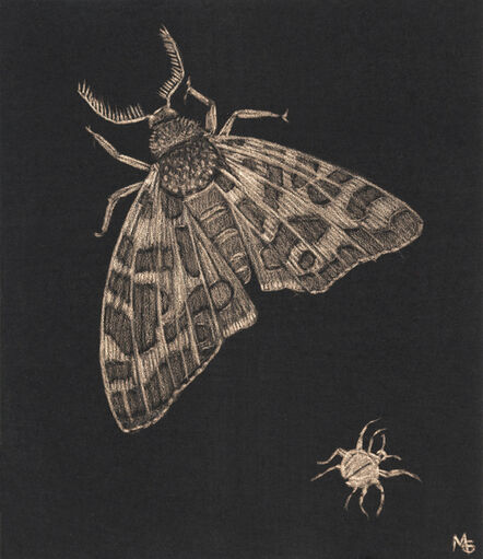 Margot Glass, 'Moth and Beetle', 2020