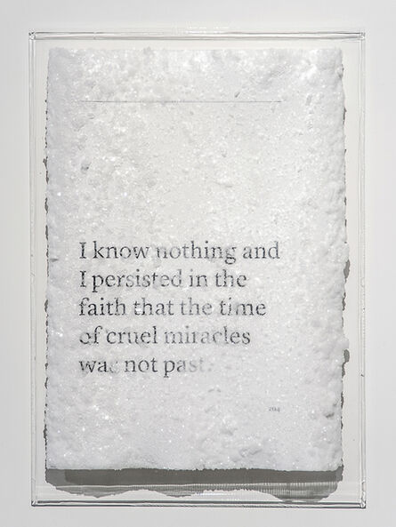 Cédric Maridet, 'I know nothing and I persisted in the faith that the time of cruel miracles was not past.', 2016