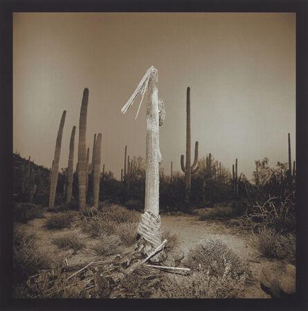 Richard Misrach, 'Saguaro Cactus', 1975 -2001