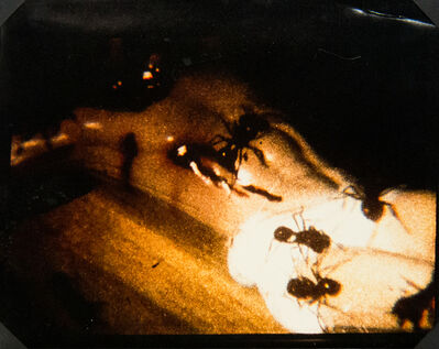 David Wojnarowicz, 'A Fire in My Belly (Film Still) [Ants on Crucifix]'