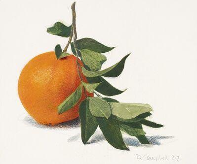 Donald Campbell, 'Fresh Orange'