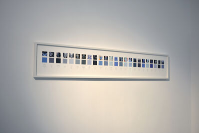 Caroline Delieutraz, 'Blue Skins', 2017