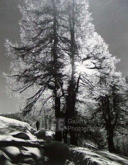 Alfred Eisenstaedt, 'Morning Sun in St. Moritz, Switzerland', 1939