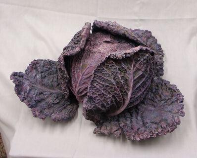 Rafael Muyor, 'Red cabbage '