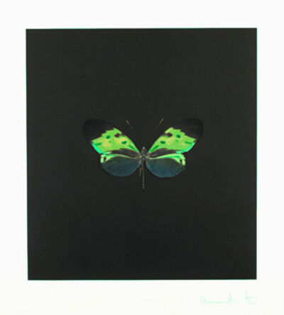 Damien Hirst, 'Small Green', 2007