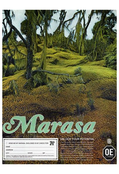 "Jonah Freeman & Justin Lowe, 'Marasa Advertisement (""Unlock Your Potential"" Campaign 1974)', 2010"