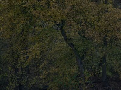 Michael Lange, 'FLUSS R2057', 2012