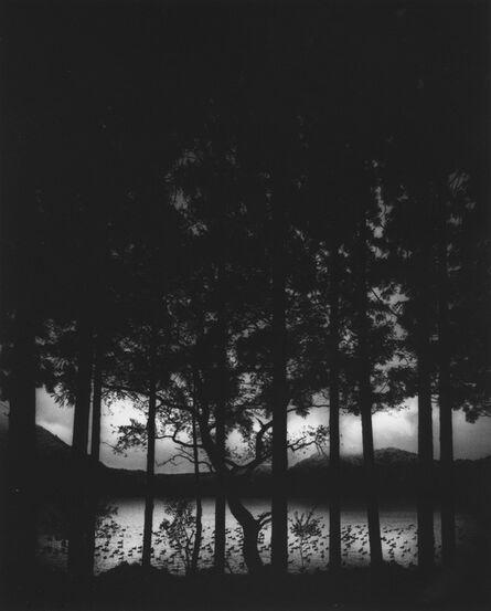 Pentti Sammallahti, 'Lake Numakawa, Japan', 2005