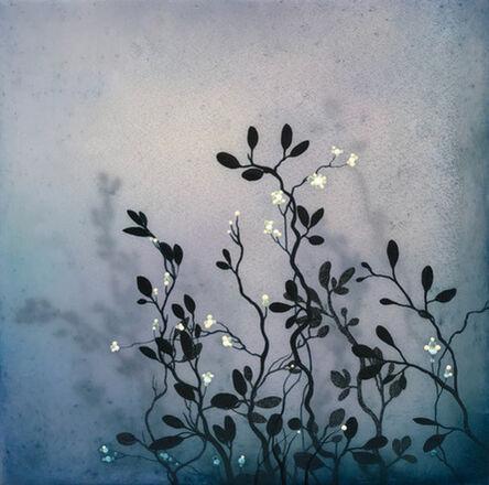 Ivy Jacobsen, 'Nature Study No.3', 2017