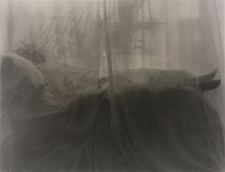 Marsha Burns, 'Untitled', No date