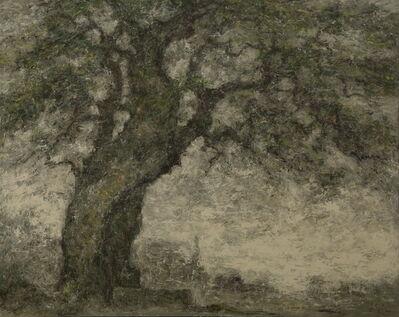 Kang Yobae, 'Wind - Tree', 2016