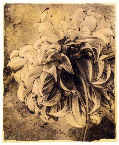 Brigitte Carnochan, 'I Pieced It With A Flower', 2018