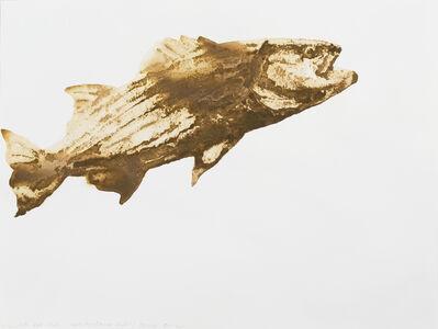 Alexis Rockman, 'Striped Bass (Morone saxatilis)', 2014