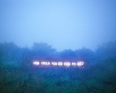 Jung Lee, 'How Could You Do This To Me?', 2011