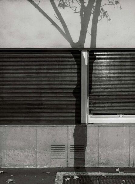 Michael Wolf (1954-2019), '#6, Paris Tree Shadows', 2014