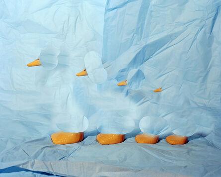 Lucas Blalock, 'Ducks', 2014