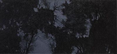 Pan Jian 潘剑, 'Shadow of Light 4', 2015