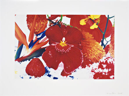 Marc Quinn, 'Untitled 02 from Six Moments of Sunrise on the Ganges Delta', 2008