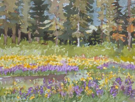 Sheila Gardner, 'Old Track - North Fork', 2001