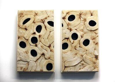 Jessica Drenk, 'Soft Cell Tissue', 2013