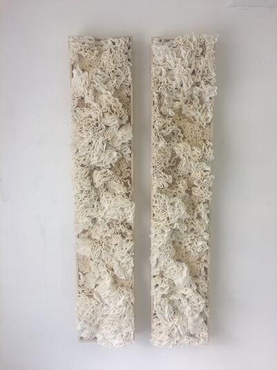 Jessica Drenk, 'Membria Varius (horizontal)', 2018