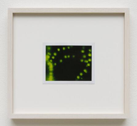 Peter Miller, 'Photuris #8', 2013