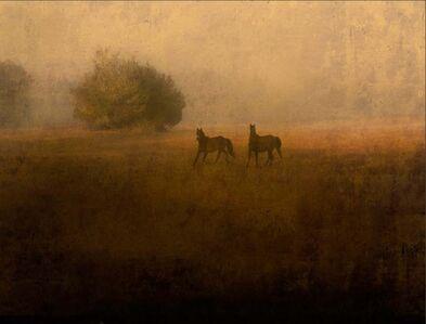Jack Spencer, 'Two Wild Horses, Cumberland Island, Georgia', 2007