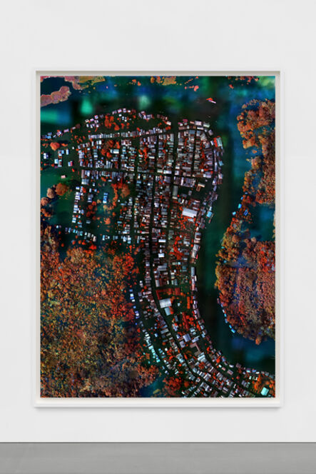 Richard Mosse, 'Flooded Municipality, Amazonas', 2021