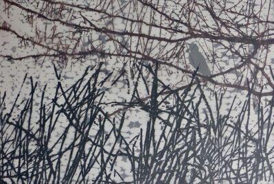 Jean Burdick, 'Marsh', 2017