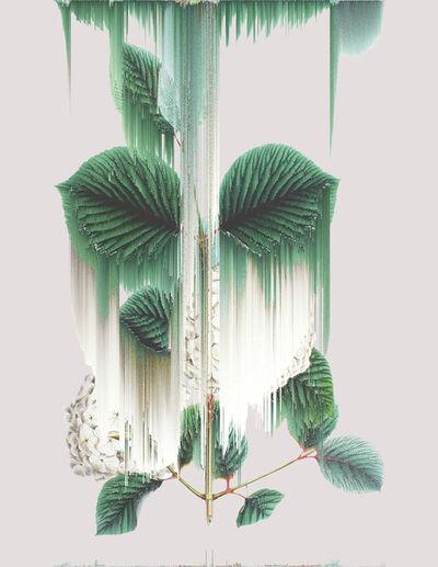 Andrea Wolf, 'Viburnum Plicatum, var. 022', 2020