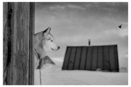 Ragnar Axelsson, 'COLLECTOR´S EDITION: Arctic Heroes »Ittoqqortoormiit, Greenland-2« ', 2017