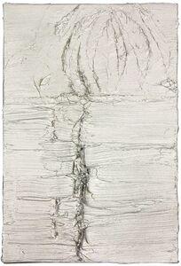 Maurício Adinolfi, 'Untitled No 09 (Mangue Serie)', 2014