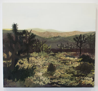 Erika Duque, 'Twenty-nine palms, CA', 2016