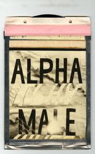 Corey Escoto, 'Alpha Male', 2015