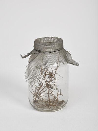 David Hammons, 'Fly Jar', 1998