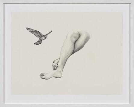 Patricia Piccinini, 'Inseparable (Nankeen Kestrel)', 2020
