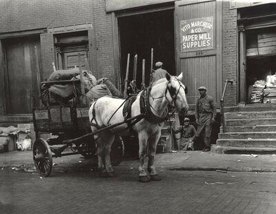 Joe Schwartz, 'Work Horses, Greenwich Village, New York City', 1930s
