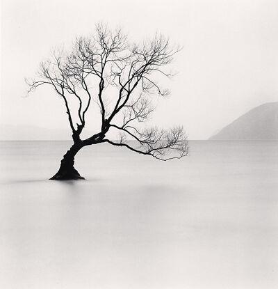 Michael Kenna, 'Wanaka Lake Tree, Study 1, Otago, New Zealand', 2013