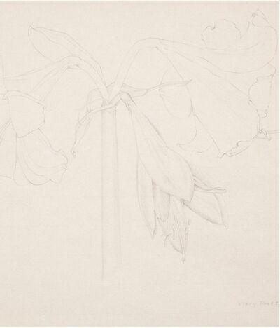 Mary Pratt, 'Amaryllis', 1971
